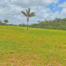Terrain en vente à Matoury  - REF 1448